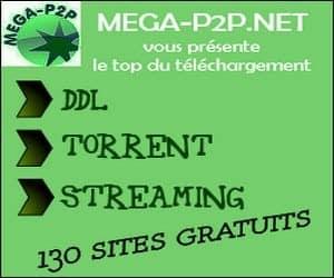 Mega P2P.NEt